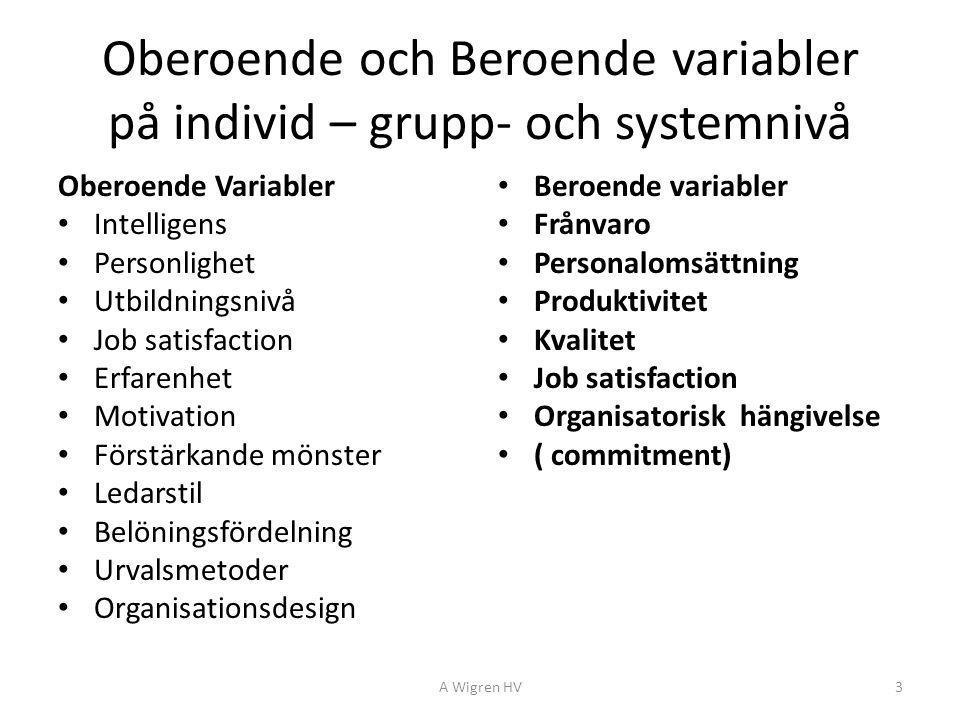 Oberoende och Beroende variabler på individ – grupp- och systemnivå