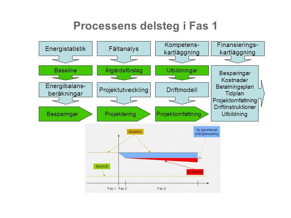 Processens delsteg i Fas 1