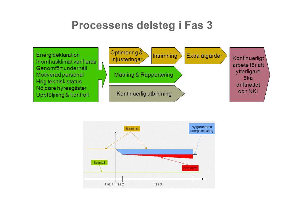 Processens delsteg i Fas 3