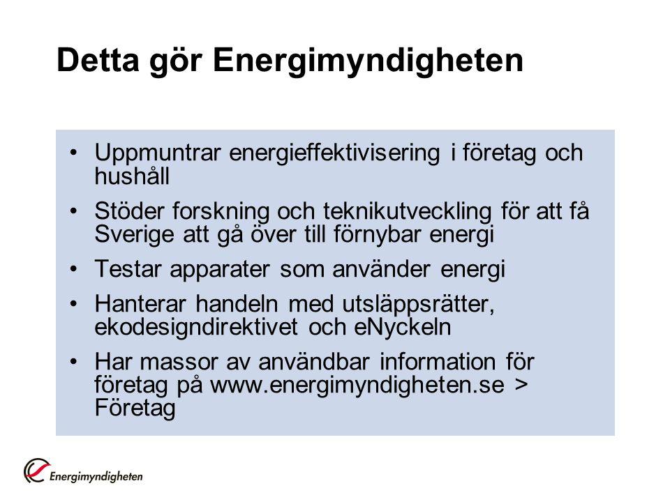 Detta gör Energimyndigheten