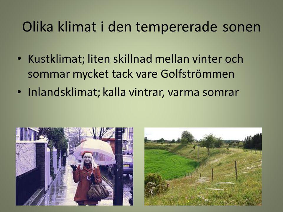 Olika klimat i den tempererade sonen