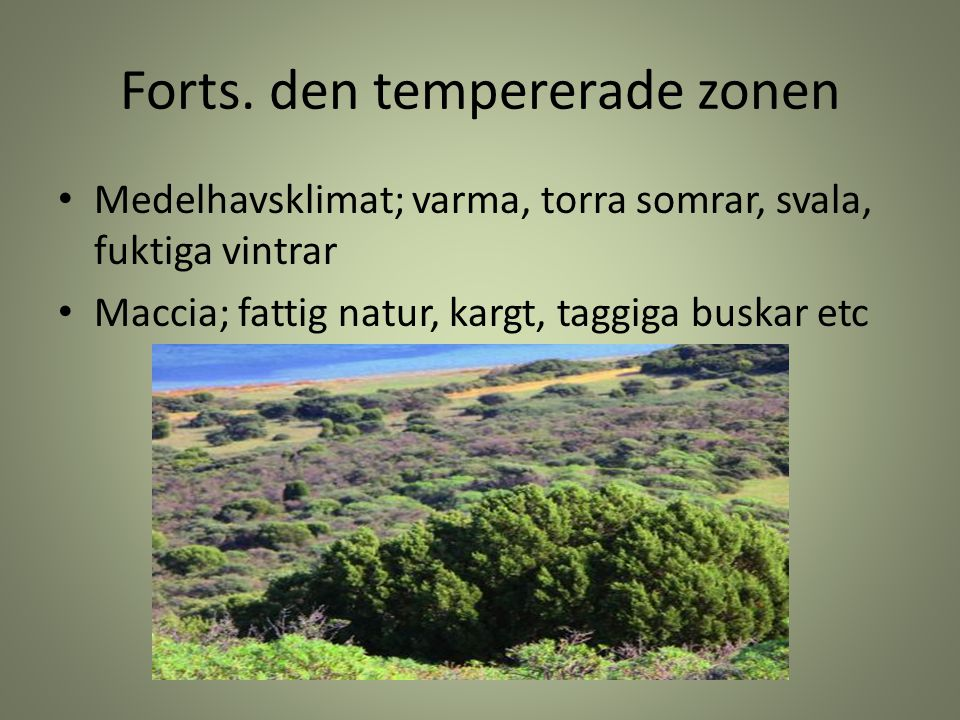 Forts. den tempererade zonen