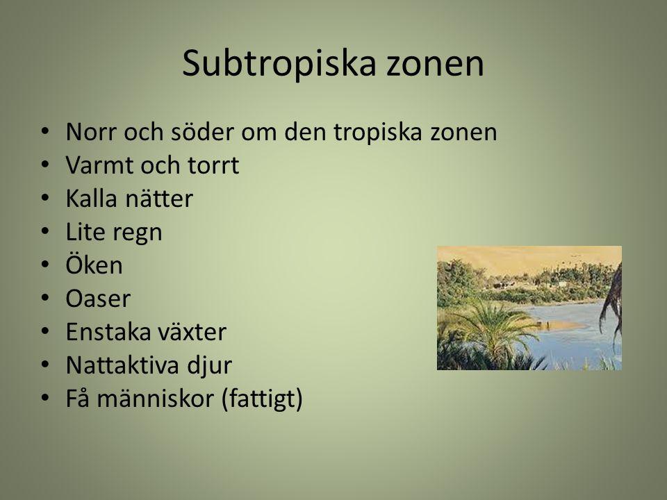 Subtropiska zonen Norr och söder om den tropiska zonen Varmt och torrt