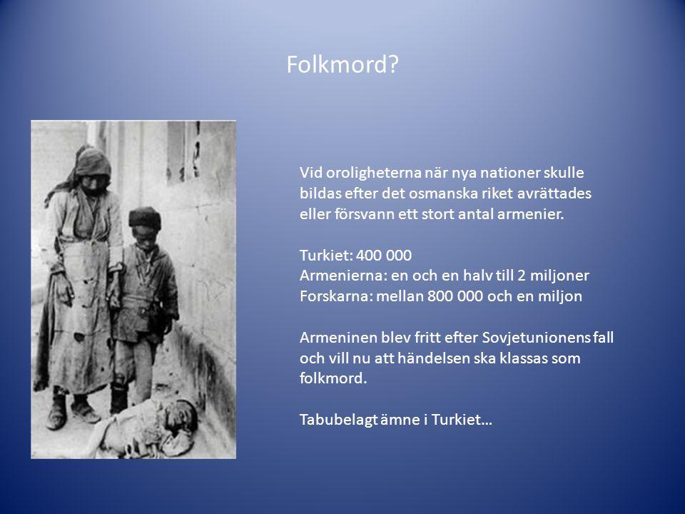 Folkmord Vid oroligheterna när nya nationer skulle bildas efter det osmanska riket avrättades eller försvann ett stort antal armenier.