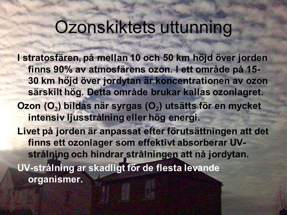 Ozonskiktets uttunning