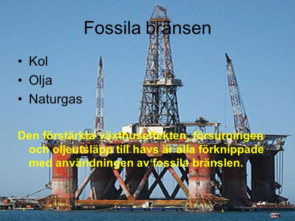 Fossila bränsen Kol Olja Naturgas