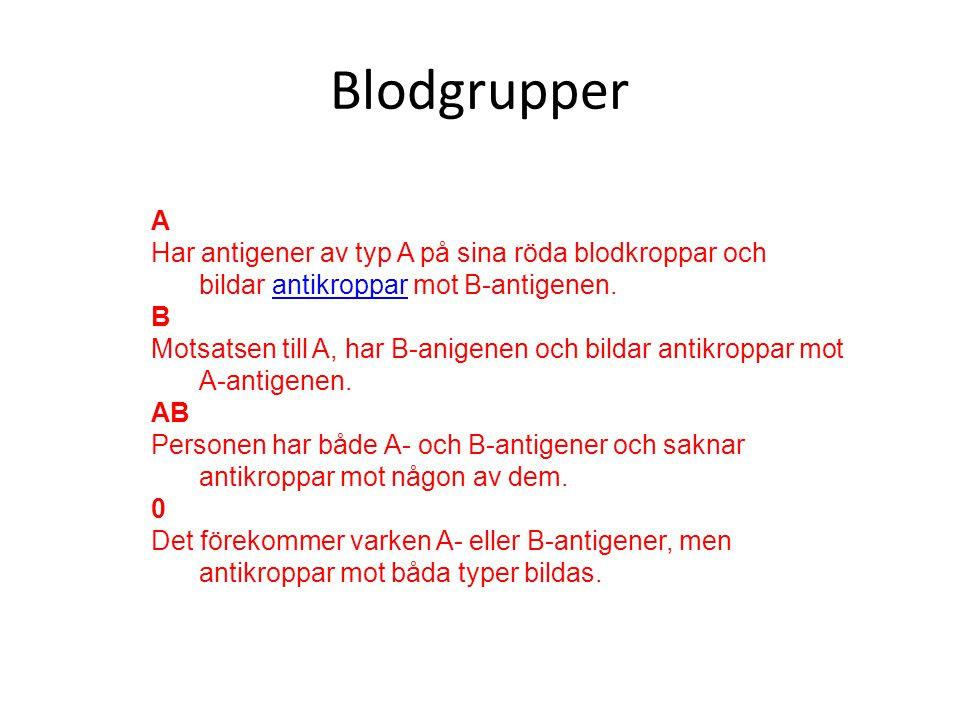 Blodgrupper A. Har antigener av typ A på sina röda blodkroppar och bildar antikroppar mot B-antigenen.