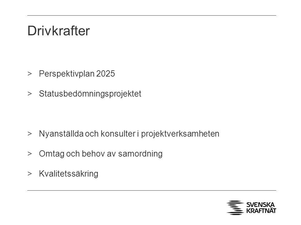 Drivkrafter Perspektivplan 2025 Statusbedömningsprojektet