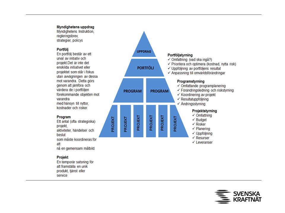 Programstyrningen införs som ett stöd mellan portföljledningen och projekten.