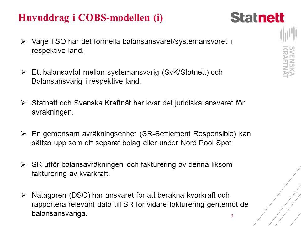 Huvuddrag i COBS-modellen (i)
