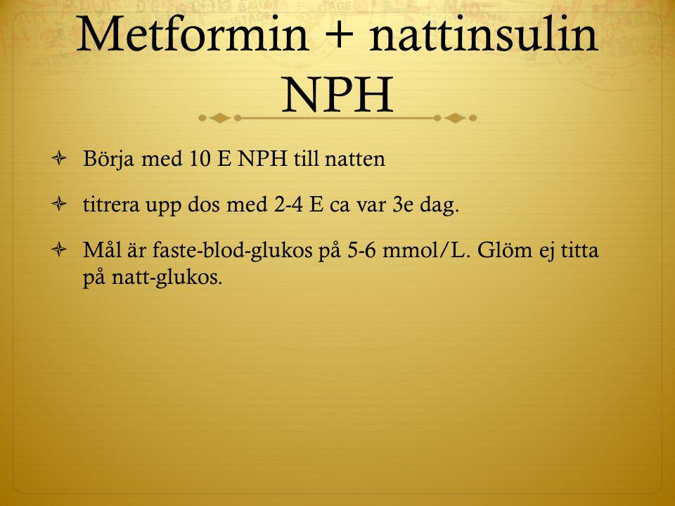 Metformin + nattinsulin NPH