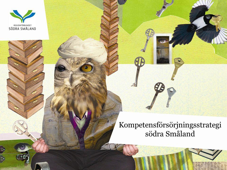 Kompetensförsörjningsstrategi södra Småland