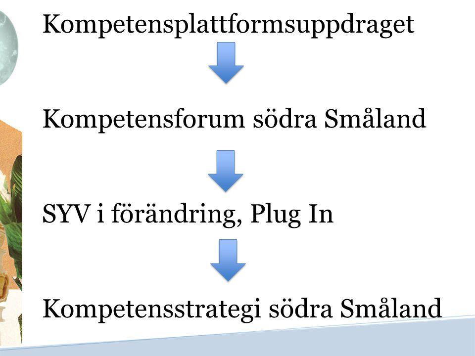Kompetensplattformsuppdraget Kompetensforum södra Småland SYV i förändring, Plug In Kompetensstrategi södra Småland