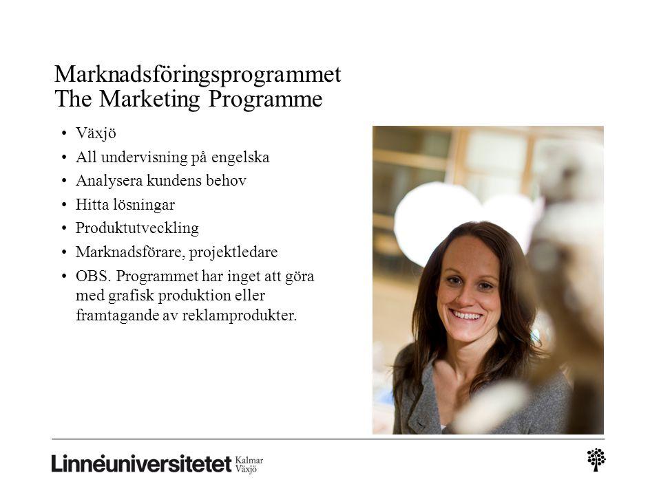 Marknadsföringsprogrammet The Marketing Programme