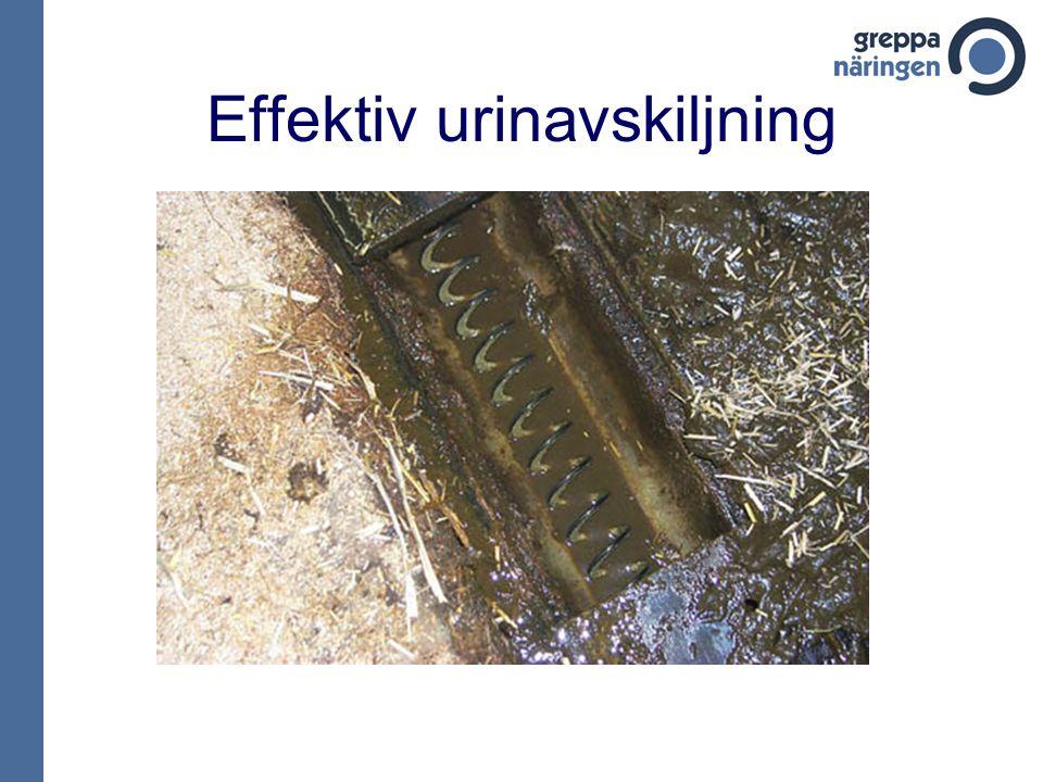 Effektiv urinavskiljning