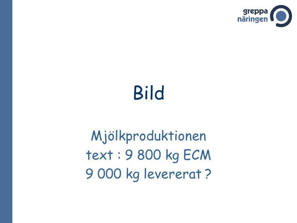 Mjölkproduktionen text : 9 800 kg ECM 9 000 kg levererat