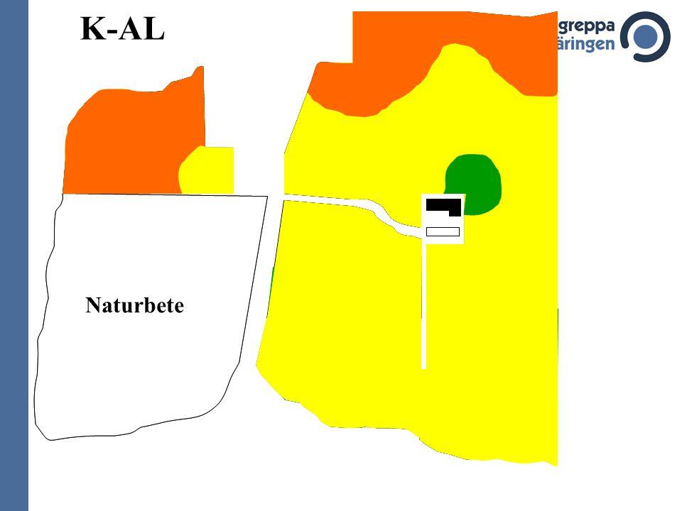 Naturbete 6,8 6,5 7,0 6,9 6,7 5,5 5,7 6,1 6,3 6,6 6,2 6,4 5,8 5,6 5,9 6,0 pH K-AL P-AL Naturbete