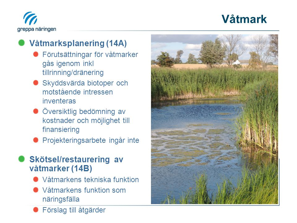 Våtmark Våtmarksplanering (14A)