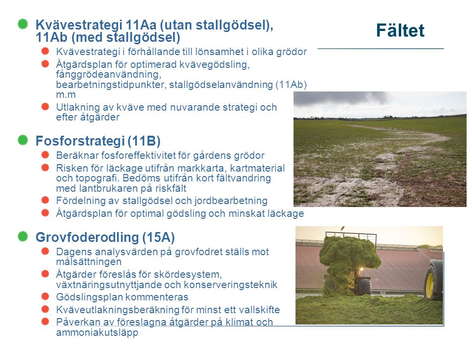 Fältet Kvävestrategi 11Aa (utan stallgödsel), 11Ab (med stallgödsel)