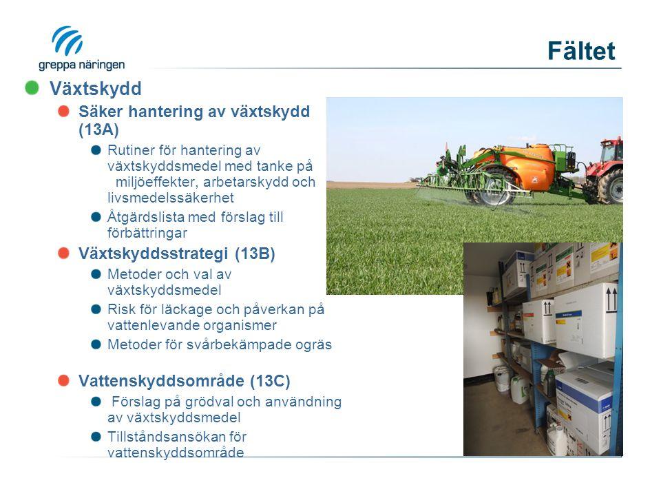 Fältet Växtskydd Säker hantering av växtskydd (13A)