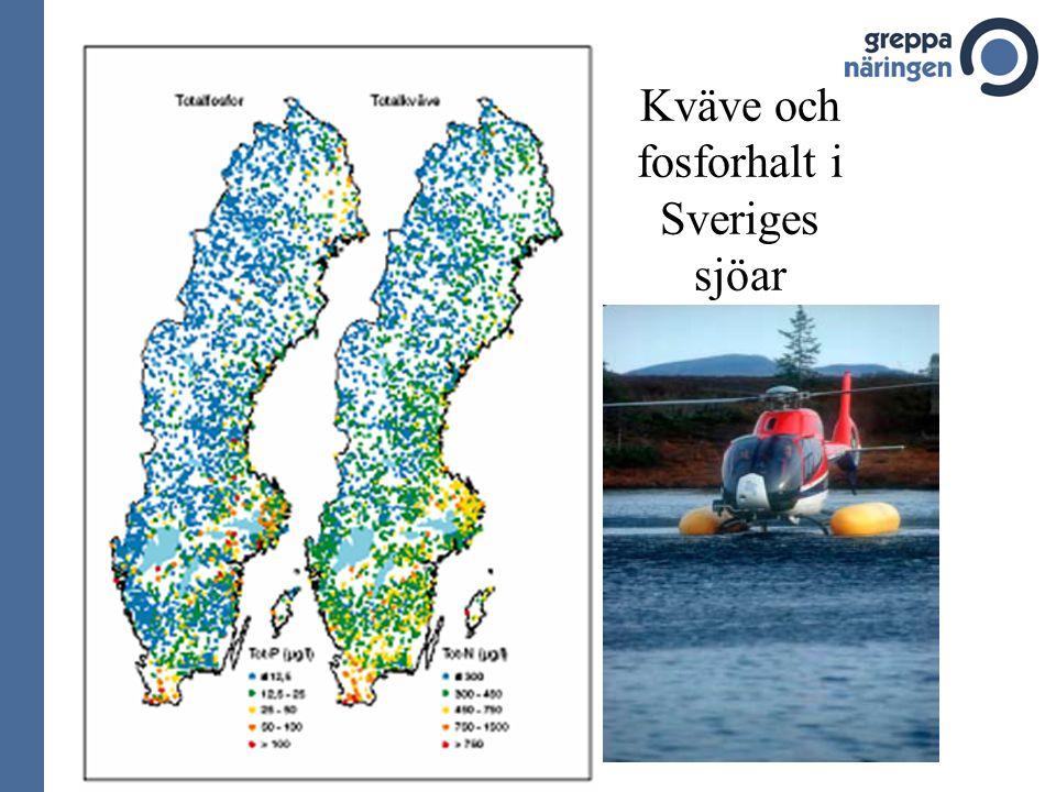 Kväve och fosforhalt i Sveriges sjöar