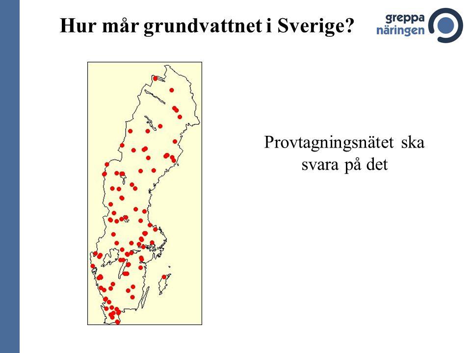 Hur mår grundvattnet i Sverige