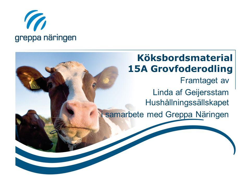 Köksbordsmaterial 15A Grovfoderodling