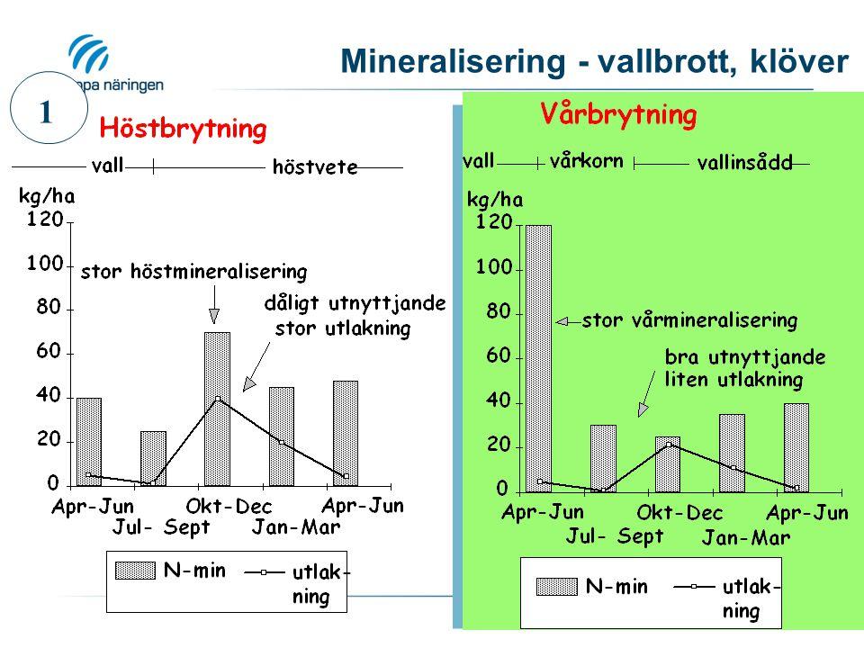 Mineralisering - vallbrott, klöver