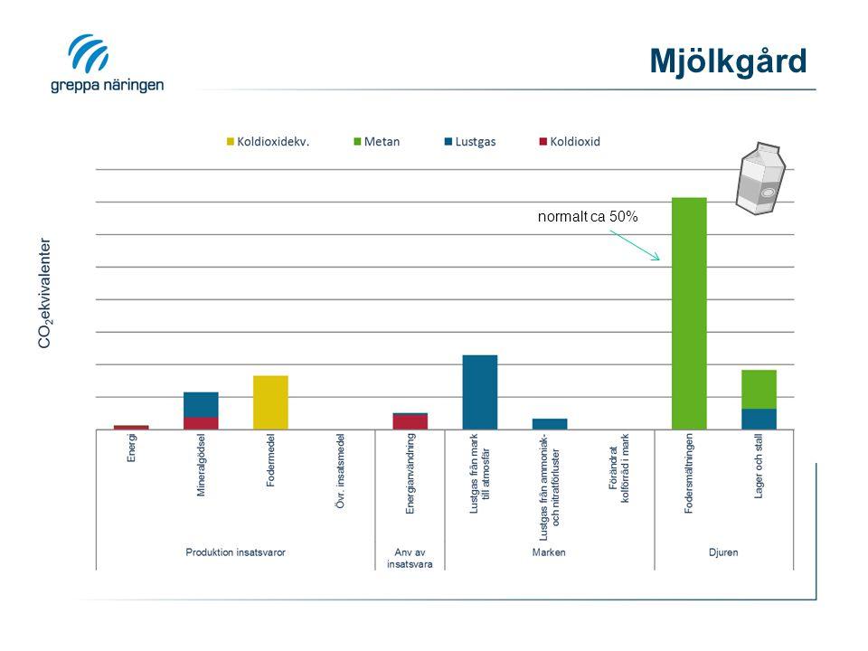 Mjölkgård 31 normalt ca 50% normalt 20-35%