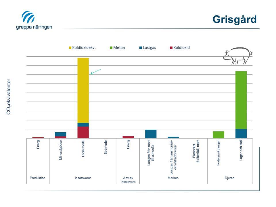 Grisgård Fodret spelar en väsentlig roll för utsläppen av växthusgaser under husdjurens livscykel. Fram till gårdsgrind står fodret för.