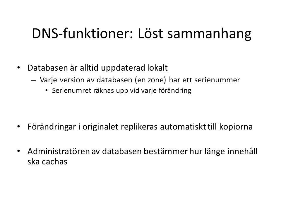 DNS-funktioner: Löst sammanhang