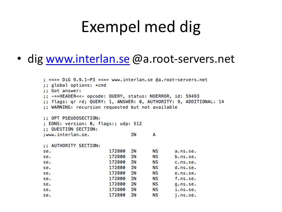 Exempel med dig dig www.interlan.se @a.root-servers.net