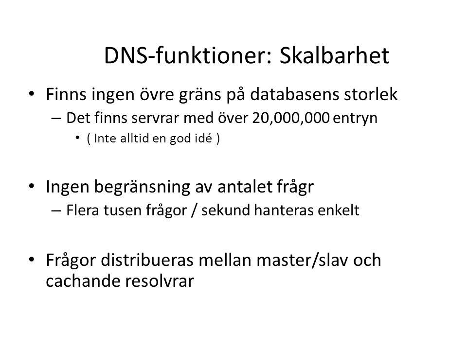 DNS-funktioner: Skalbarhet