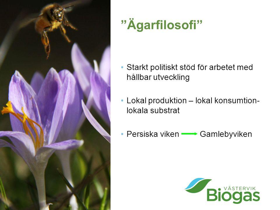 Ägarfilosofi Starkt politiskt stöd för arbetet med hållbar utveckling. Lokal produktion – lokal konsumtion-lokala substrat.