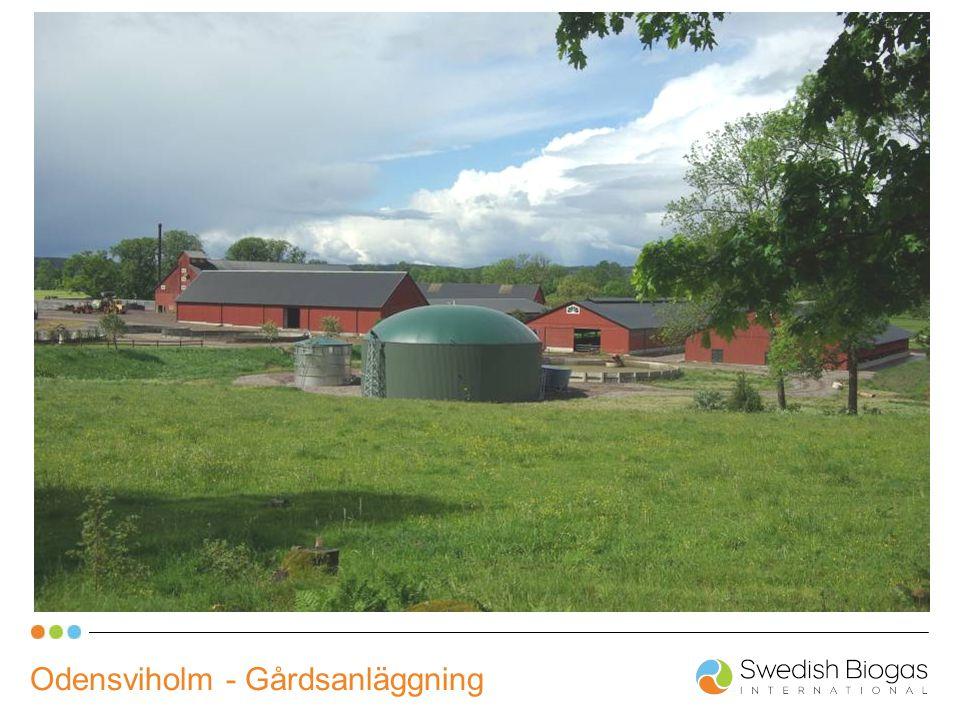 Odensviholm - Gårdsanläggning