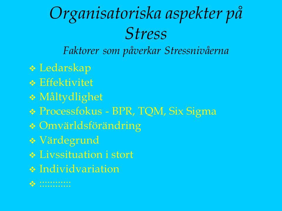 Organisatoriska aspekter på Stress Faktorer som påverkar Stressnivåerna