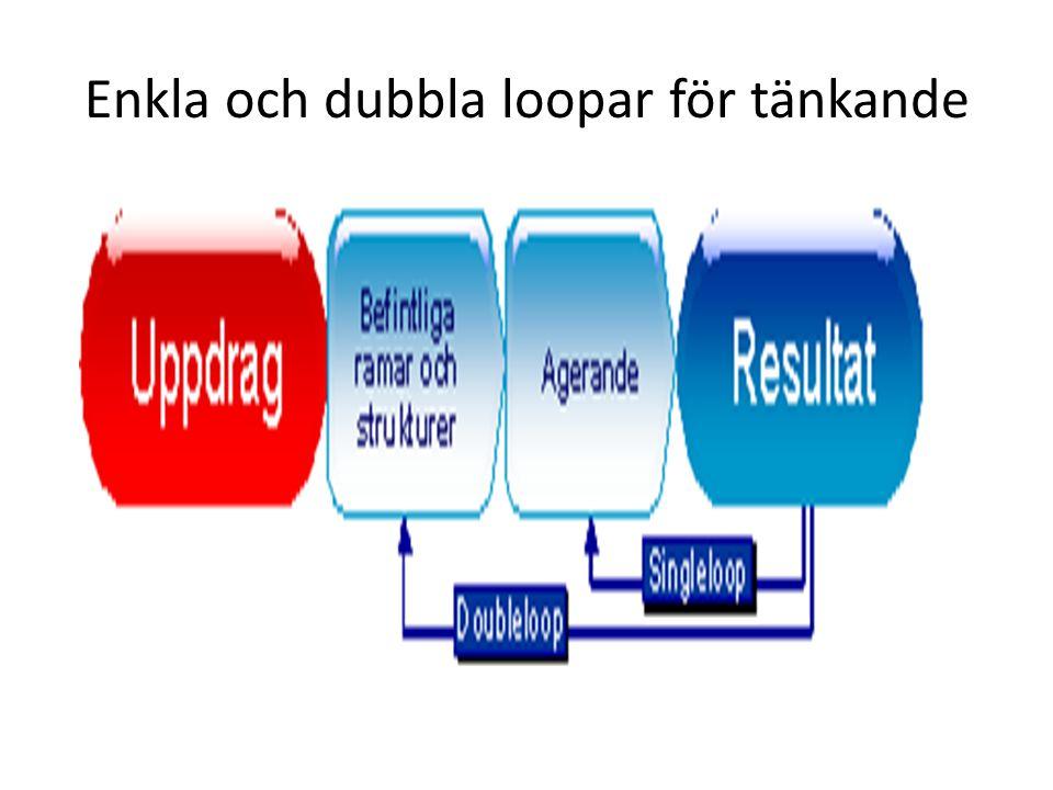 Enkla och dubbla loopar för tänkande