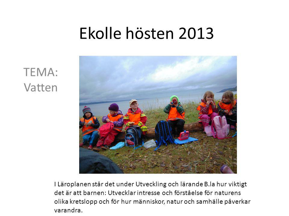 Ekolle hösten 2013 TEMA: Vatten
