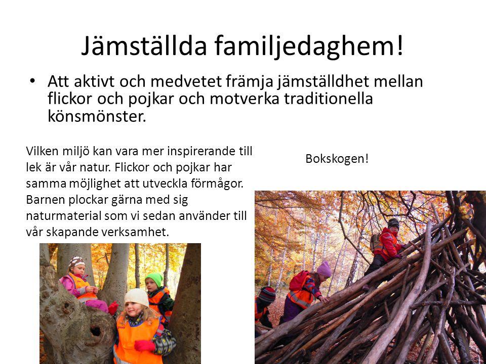 Jämställda familjedaghem!