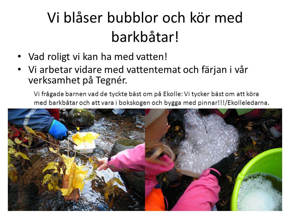 Vi blåser bubblor och kör med barkbåtar!