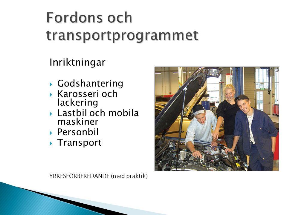 Fordons och transportprogrammet