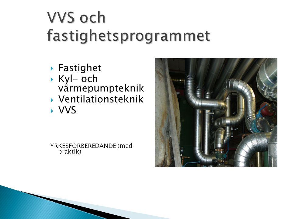 VVS och fastighetsprogrammet