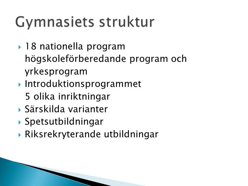 Gymnasiets struktur 18 nationella program