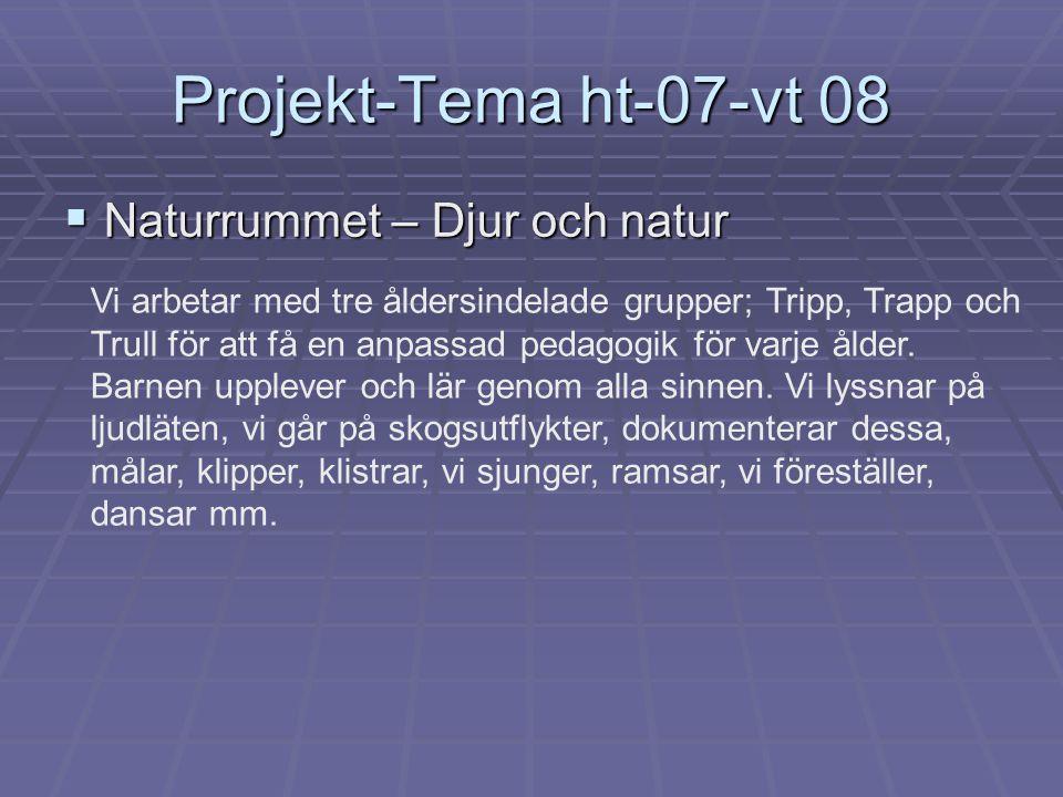 Projekt-Tema ht-07-vt 08 Naturrummet – Djur och natur