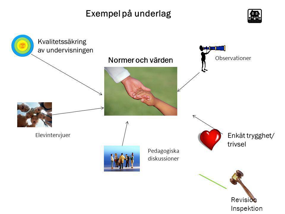 Exempel på underlag Normer och värden Revision Inspektion