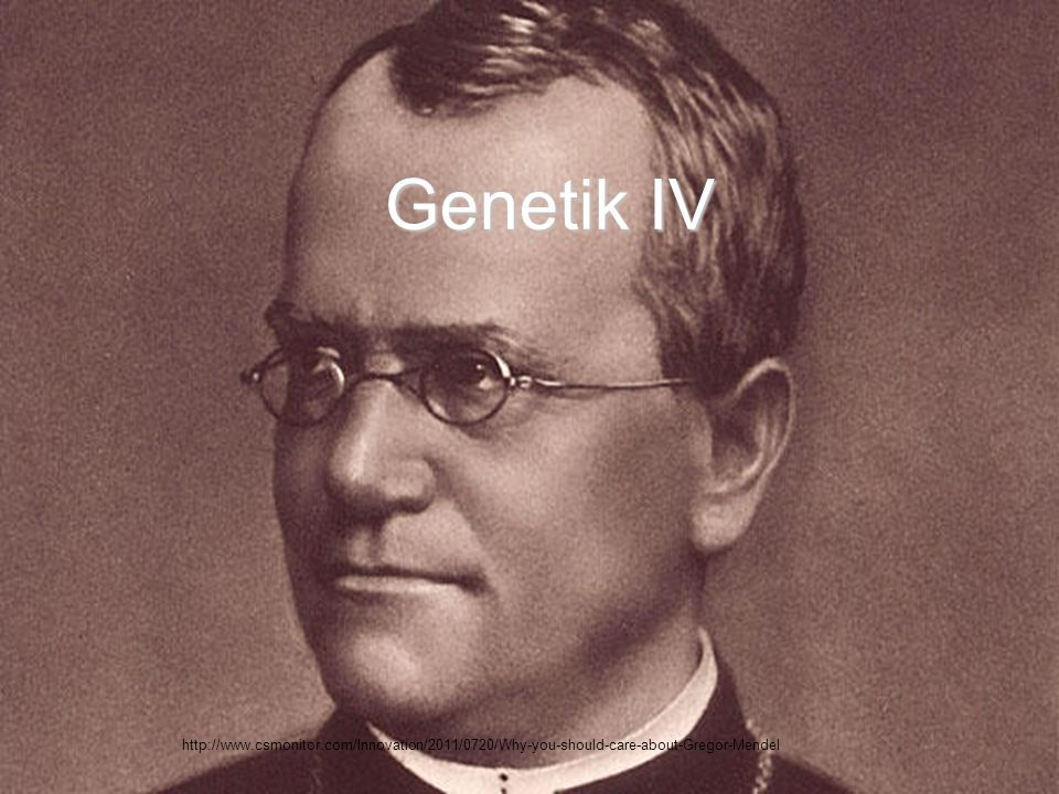 Genetik IV http://www.csmonitor.com/Innovation/2011/0720/Why-you-should-care-about-Gregor-Mendel