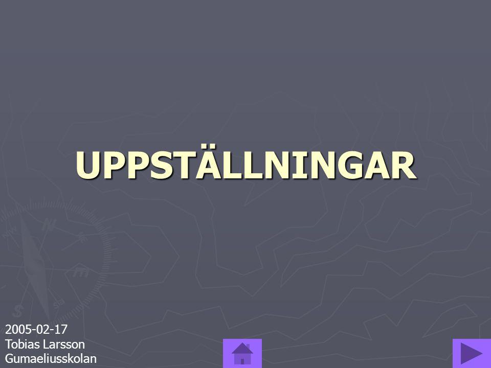 UPPSTÄLLNINGAR 2005-02-17 Tobias Larsson Gumaeliusskolan