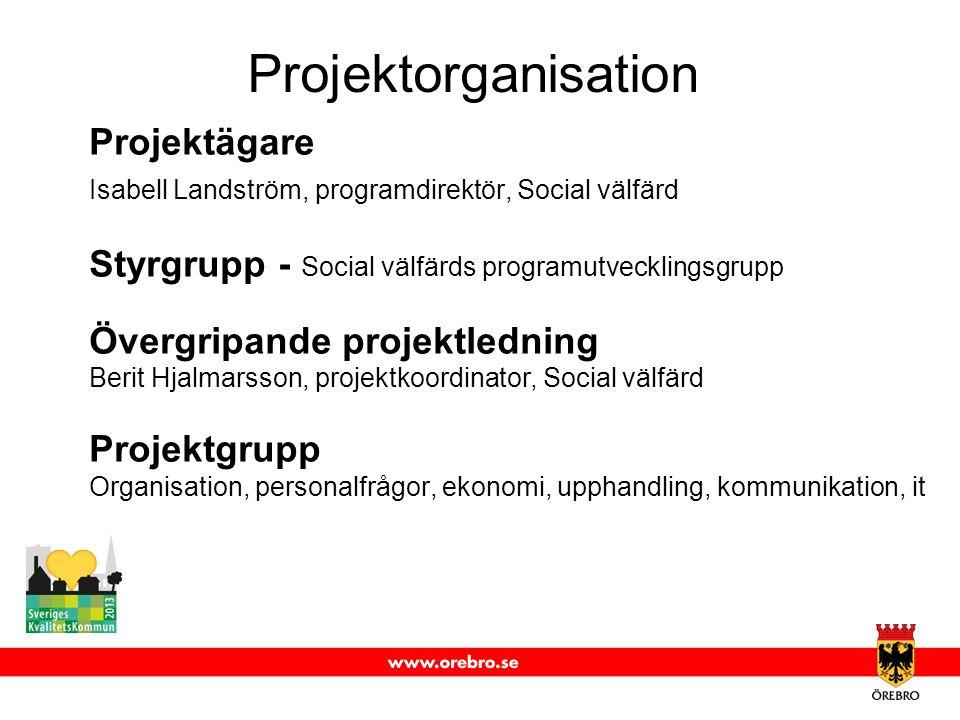 Projektorganisation Projektägare