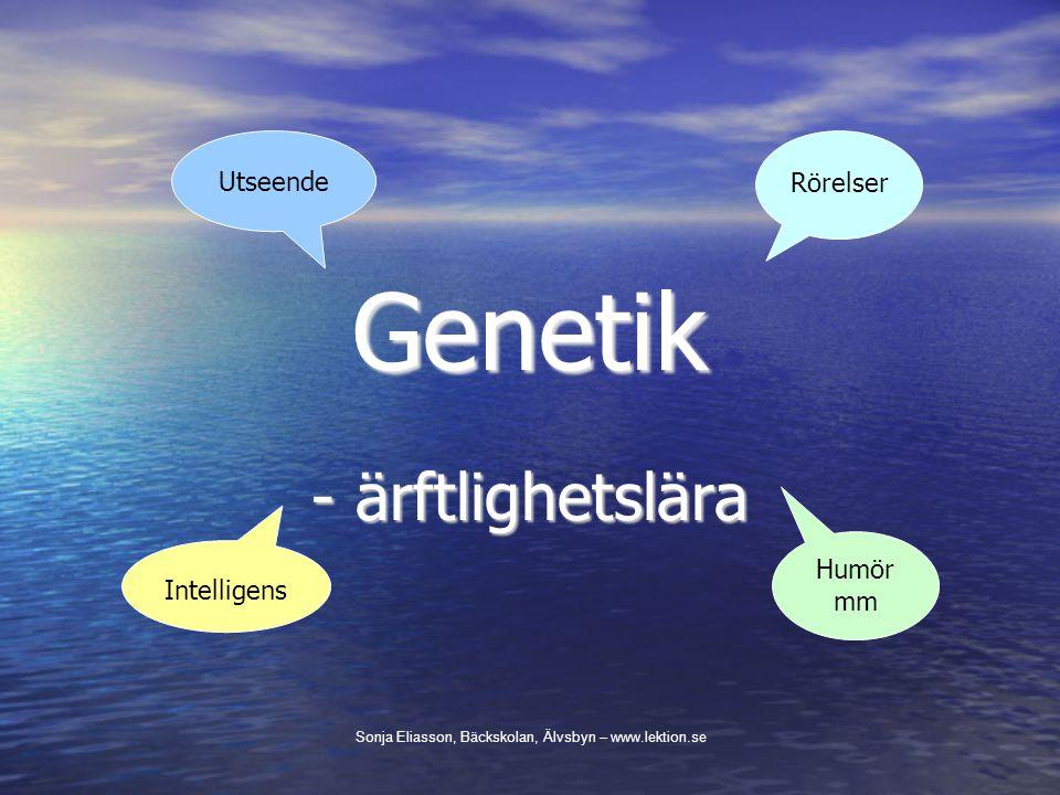 Genetik - ärftlighetslära Utseende Rörelser Humör mm Intelligens
