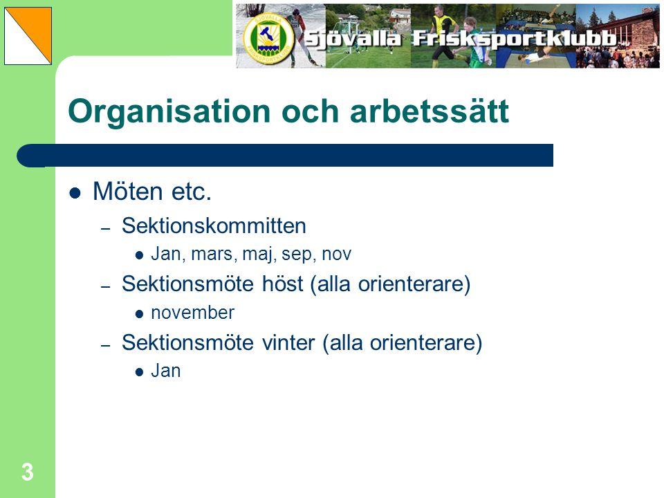 Organisation och arbetssätt